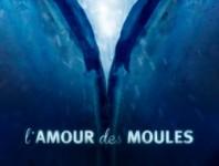 trailer; l'amour des moules